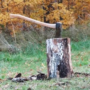 Stockpiling Wood