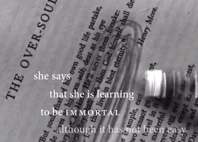 """on a prophet"" • a video poem"